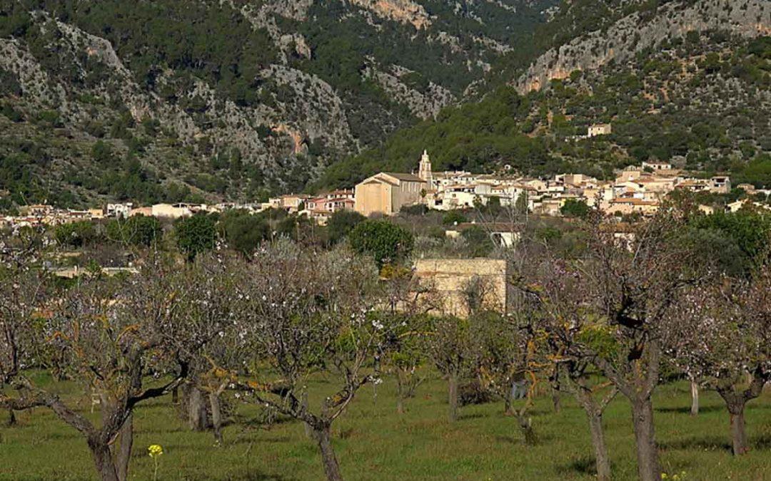 Excursió Campanet-Binibona