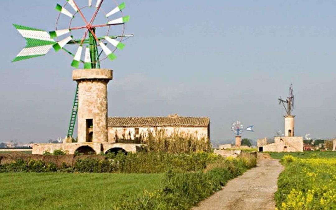 Excursión Algaida – Sant Jordi. Domingo 28 de octubre