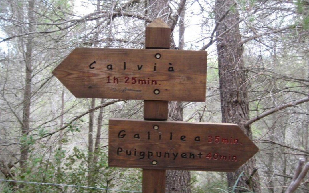 Excursió Calvià-Galilea. Dissabte 1 de Desembre de 2018