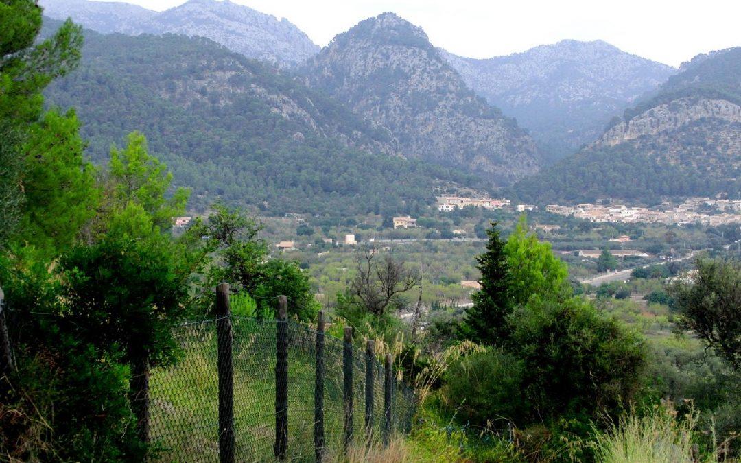 Excursió Caimari-Mancor-Selva. Diumenge 31 de març.