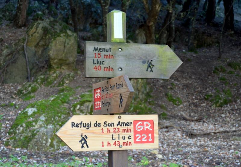 NwPalma i PassaPassa al pont de les Illes Balears a Lluc