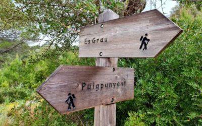Excursión alrededores de Puigpunyent y Sa Campaneta